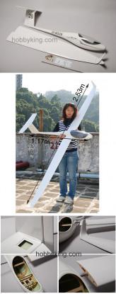 ASW28 Fibreglass Electric Glider 2.53M (99.6in) ARF