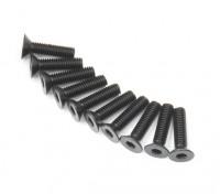 Metal platte kop Machine Hex Screw M3x12-10pcs / set