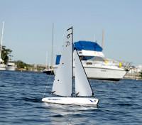 资源管理器RG65赛艇P&P无发射器和接收器