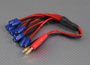 4毫米香蕉插头与6×EC3充电插头线束