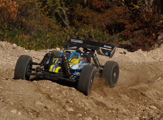 Basher BSR BZ-888 1/8 4WD Racing Buggy (ARR)