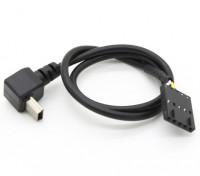 GoPro Hero 3 HD Live câble de sortie vidéo (1pc)