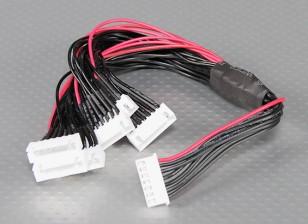 JST-XH Parallel balance Lead 6S 250mm (6xJST-XH)