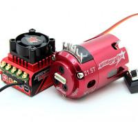 Track ROAR genehmigt 1 / 10. Auf der Klasse Brushless Regler und Motor Combo (21.5T)
