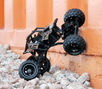 Basher Rocksta 24.01 4WS Mini Rock Crawler (RTR)