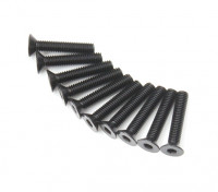 Plano del metal Machine Head Tornillo hexagonal M3x16-10pcs / set