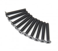 Plano del metal Machine Head Tornillo hexagonal M3x20-10pcs / set