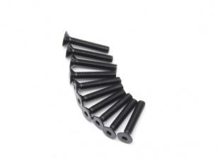PC plano del metal Machine Head Tornillo hexagonal M2.5x14-10 / set