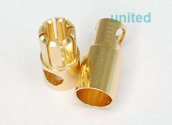 Polymax 6mm oro connettori 10 paia (20pc)