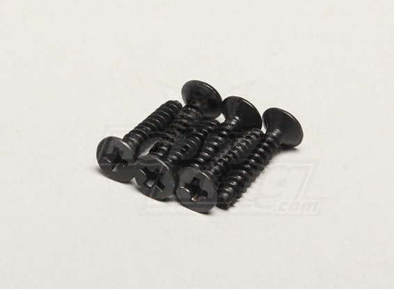 Nutech Flat Screw ISO3*15 (6pcs) - Turnigy Titan 1/5