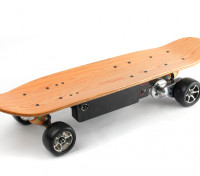 Long Board Style Electric Skateboard