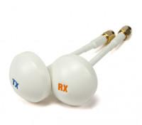 5.8GHz polarizada Circular Receptor Antena (RP-SMA) (RHCP) (100 mm)