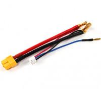 Harness XT60 ficha para 2S Hardcase Lipo com Bala 5 milímetros conector e JST-XH (1pc)
