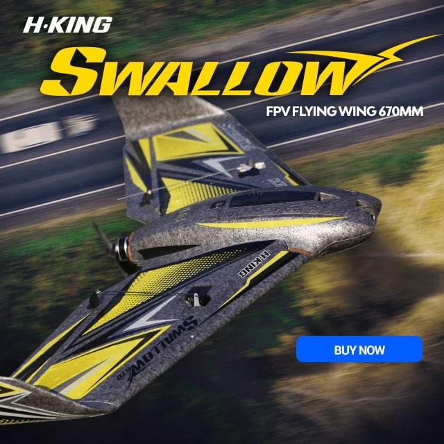 H-King Swallow